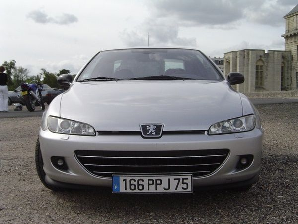 The Peugeot 406 2004 frontal look