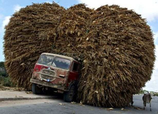 overloading-vehicle