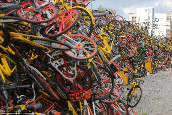 abandoned bikes turn rubbish