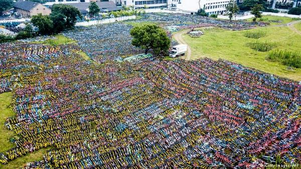 abandoned bikes look like a field of flowers
