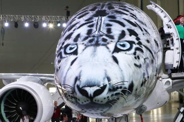 an-airplane-has-snow-leopard-painting-on-its-nose