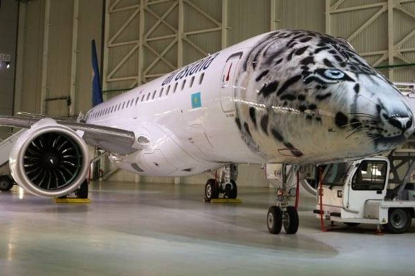 an-aircraft-painted-in-snow-leopard-livery