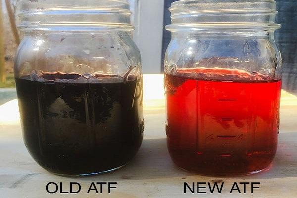 Image-of-old-vs-new-transmission-fluid