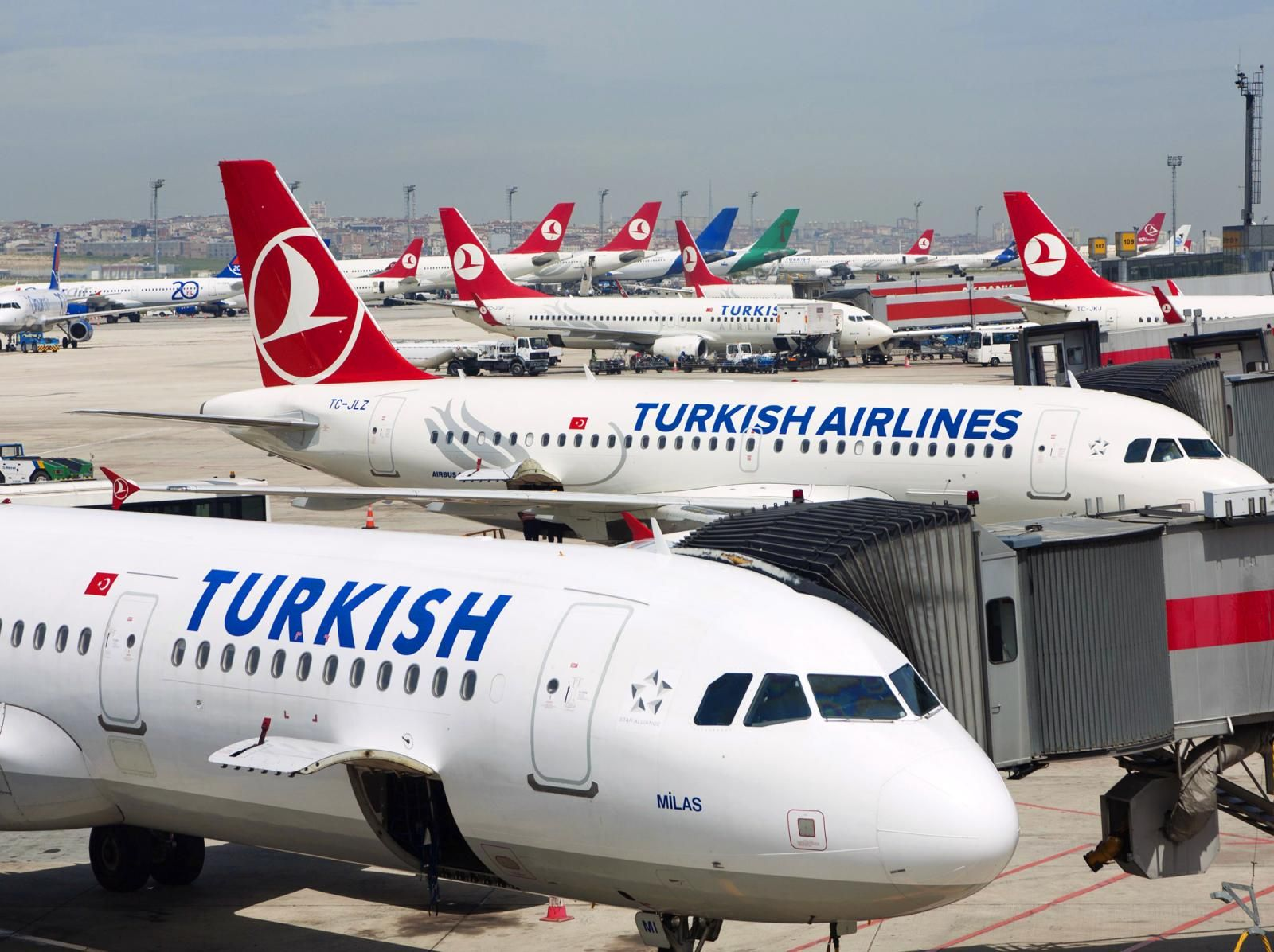 a-plane-of-the-turkish-airline
