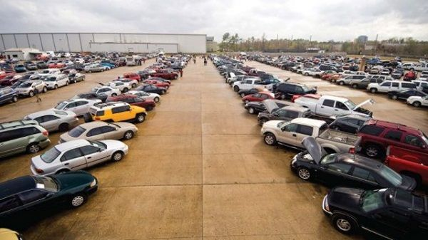 Cars-lined-up-for-sale-by-auction
