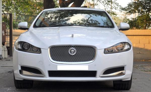 front-of-a-jaguar