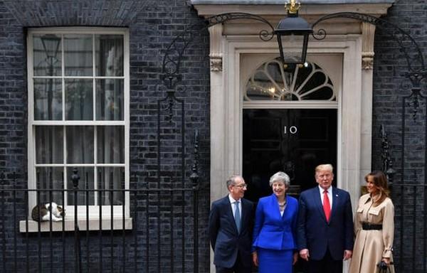 trump-uk-visit-and-cat-larry