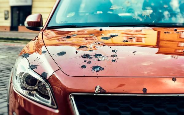 bird-poop-red-car