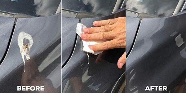 removing-bird-poop-on-car