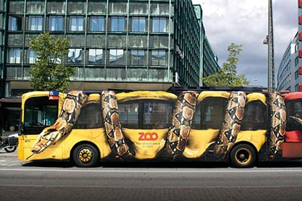 Python-squeezing-a-bus-zoo-advert