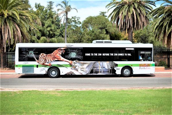 Zoo-service-bus-advert