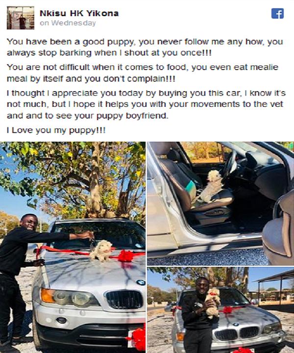 Zambian-Comedian-Nkisu-Yikona-gifts-pet-puppy-BMW-X5-SUV