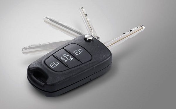 image-of-flip-out-key-immobilizer-remote