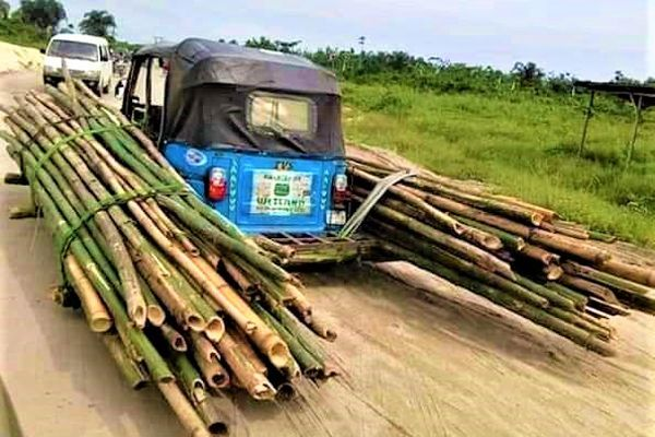 Keke-NAPEP-carries-overload-in-Delta