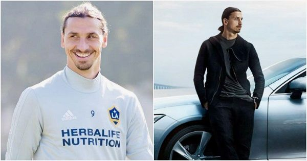image-of-zlatan-ibrahimovic