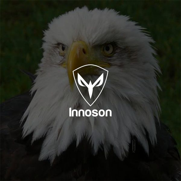 Innoson-new-Logo-Eagle-background
