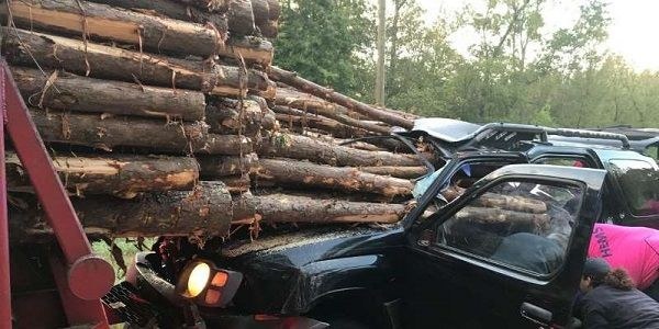 image-of-logs-and-man's-Nissan-xterra-from-Georgia