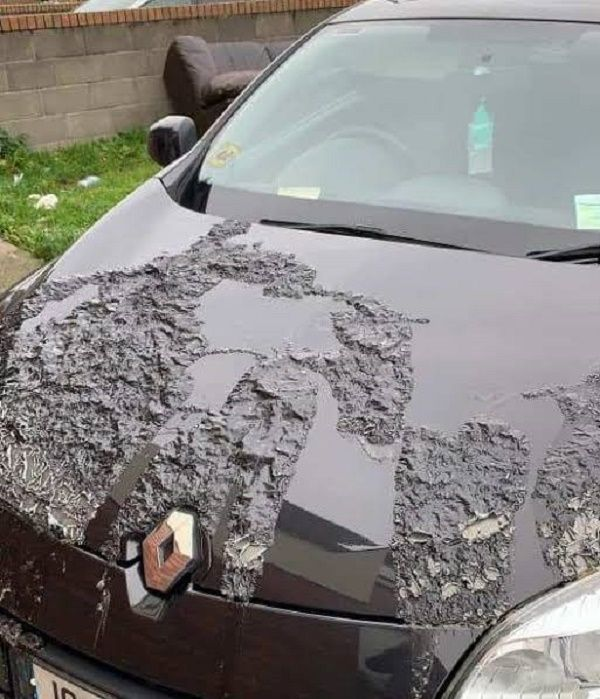 thugs-douse-car-in-acid
