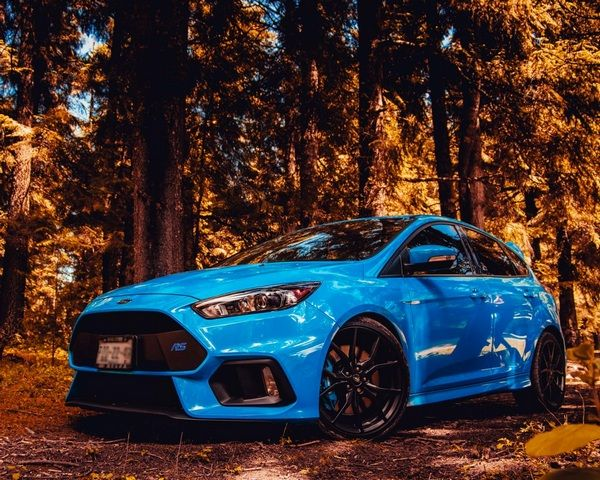 blue-ford-car-in-the-woods