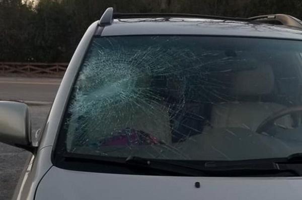 SUV-windscreen-shatterd-by-catfish