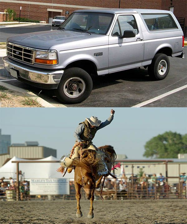 Ford-Bronco-SUV-and-Broncos-horse