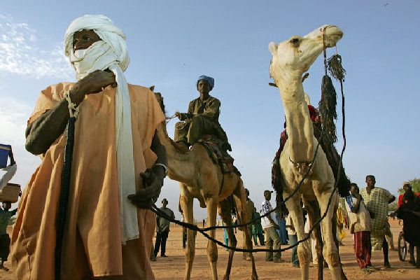 travelers-on-camels