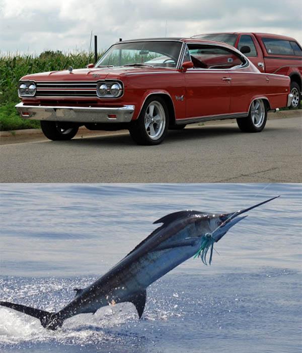 AMC-Marlin-car-and-Marlin-fish