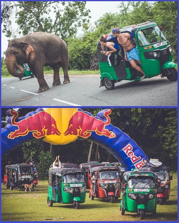 Photos-from-Red-Bull-TukTuk-tournament-in-Sri-Lanka