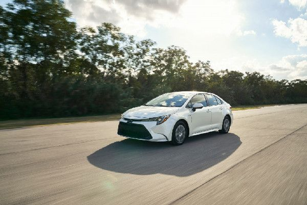 2020-toyota-corolla-on-the-road