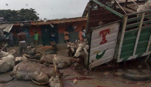 image-of-23-people-killed-as-lagos-bound-truck-somersaults-in-Niger