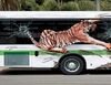 [Photo gallery] Coolest and most insanely creative bus-painted adverts from around the world