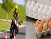 Oncoming car driver throws egg, blinding motocyclist in one eye