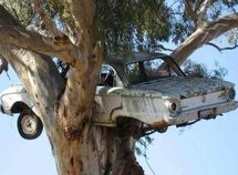 Have a look at 30 most bizarre car accidents