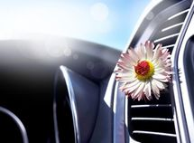 What to do when car conditioner smells badly?