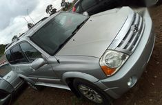 Isuzu ZXS 2006 Silver for sale
