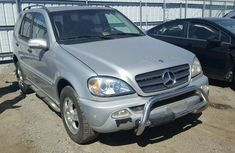 2002 Mercedes Benz ML320 Silver for sale