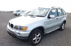 2010 BMW X5 Silver For Sale
