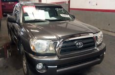 Toyota Tacoma 2009 Gray for sale