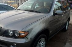BMW X5 4.4i Sports Activity 2006 Gray for sale