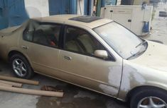 Nissan Maxima 1996 Gold for sale