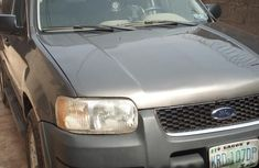 Ford Escape 2004 Gray for sale