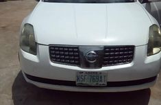 Nissan Maxima 2005 White fỏ sale