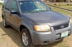 Ford Escape XLT 2004 Gray for sale