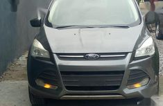 Ford Escape 2014 Gray for sale