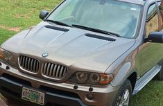 BMW X5 2006 Gray for sale