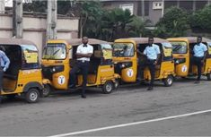 Keke Napep prices in Nigeria 2019, how much profit you can earn & easy business models