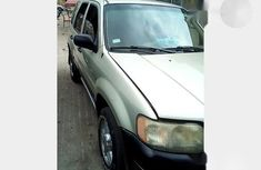 Neat Nigerian used Ford Escape 2003 Gold