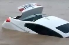 Ungrateful young Indian pushes his ₦18m BMW birthday gift into river, wanted Jaguar