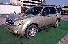 Nigeria Used Ford Escape 2010 Model Gold