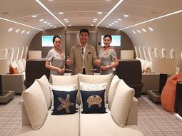 [Photos & Video] The world's only private Boeing 787 Dreamliner costs N27m an hour to hire